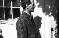 A-Pragmatist-Perspective-on-Wittgenstein-attachment