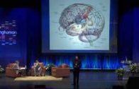 Being-Human-Perception-The-Brain-Ramachandran-Beau-Lotto-attachment
