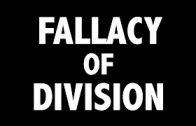 CRITICAL-THINKING-Fallacies-Fallacy-of-Division-attachment