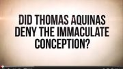Did-Saint-Thomas-Aquinas-Deny-the-Immaculate-Conception-attachment