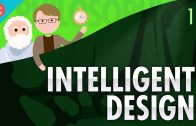 Intelligent-Design-Crash-Course-Philosophy-11-attachment