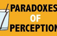 PHILOSOPHY-Epistemology-Paradoxes-of-Perception-1-Argument-from-Illusion-HD-attachment