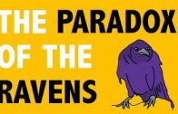 PHILOSOPHY-Epistemology-The-Paradox-of-the-Ravens-HD-attachment