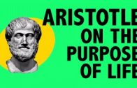 PHILOSOPHY-History-Aristotle-on-the-Purpose-of-Life-HD-attachment