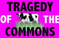 PHILOSOPHY-Rational-Choice-Theory-Tragedy-of-the-Commons-HD-attachment