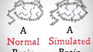 The-Brain-Simulator-Thought-Experiment-attachment