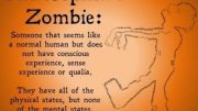 Philosophical-Zombies-Thought-Experiment-attachment