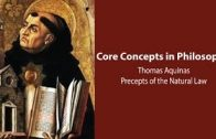 Thomas Aquinas on the Precepts of the Natural Law  – Philosophy Core Concepts