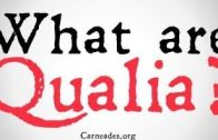 What-are-Qualia-Philosophical-Definitions-attachment